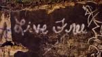 live free graffiti